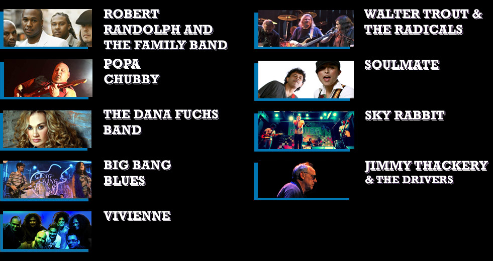 Mahindra Blues Festival 2013